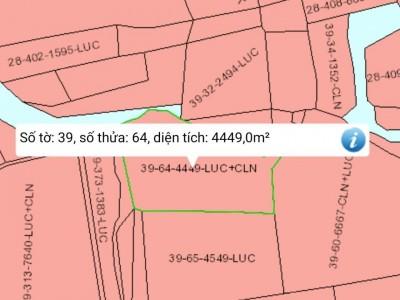 Bán đất Long Tân, Nhơn Trạch. 550 triệu / sào.