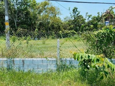 Chuyển về quê sinh sống nên cần bán lại lô đất Củ Chi, Xã Tân Thông Hội. Giá 460 triệu còn thương lượng.